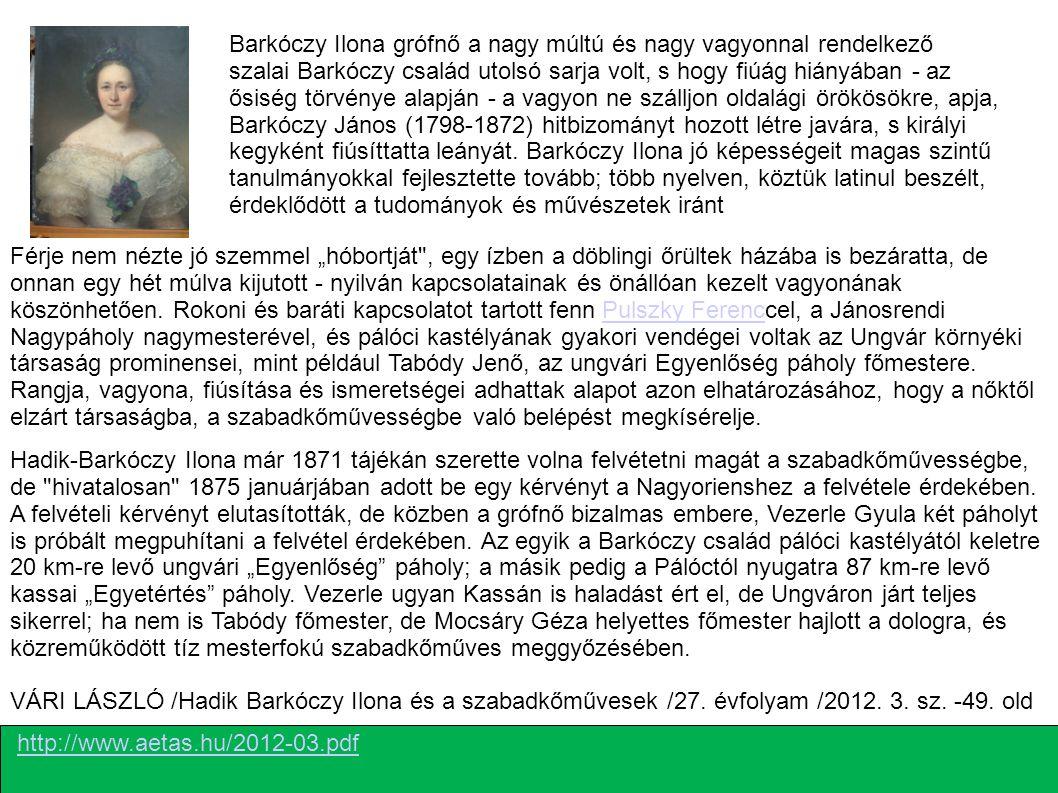Barkóczy Ilona grófnő a nagy múltú és nagy vagyonnal rendelkező szalai Barkóczy család utolsó sarja volt, s hogy fiúág hiányában - az ősiség törvénye alapján - a vagyon ne szálljon oldalági örökösökre, apja, Barkóczy János (1798-1872) hitbizományt hozott létre javára, s királyi kegyként fiúsíttatta leányát. Barkóczy Ilona jó képességeit magas szintű tanulmányokkal fejlesztette tovább; több nyelven, köztük latinul beszélt, érdeklődött a tudományok és művészetek iránt