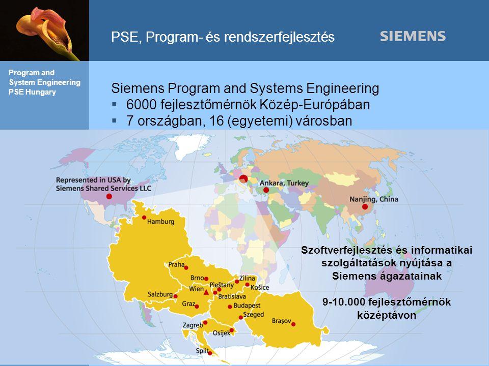 PSE, Program- és rendszerfejlesztés