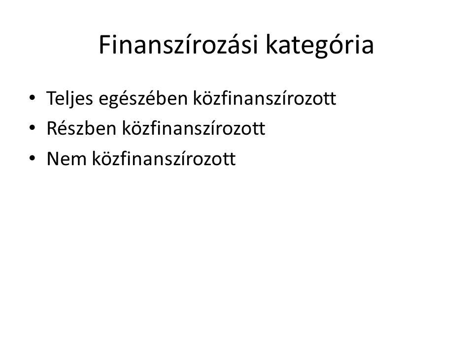 Finanszírozási kategória