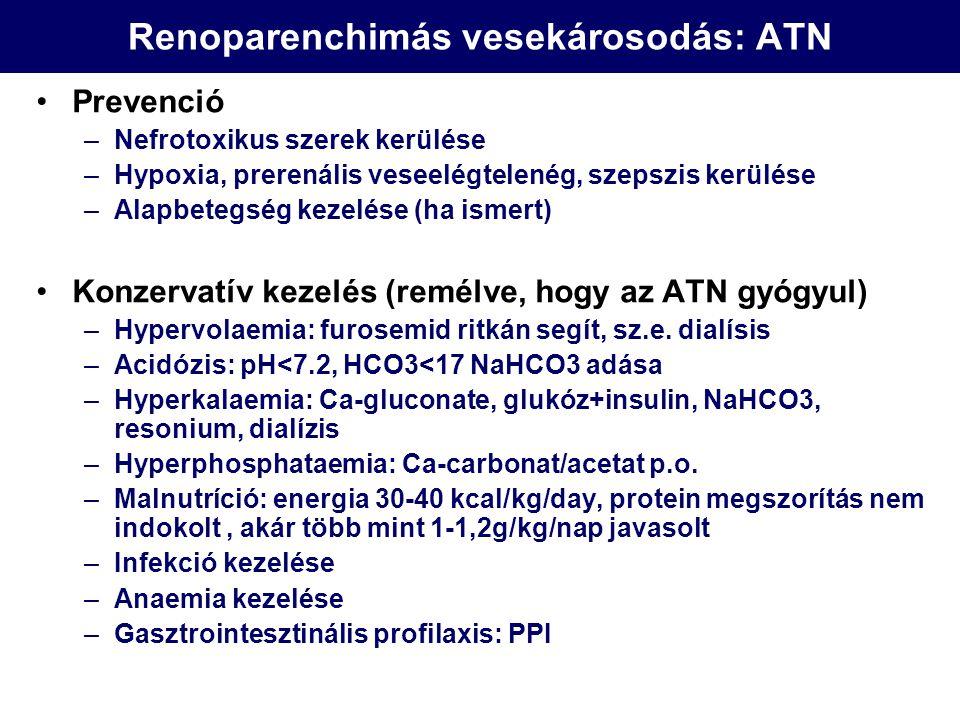 Renoparenchimás vesekárosodás: ATN