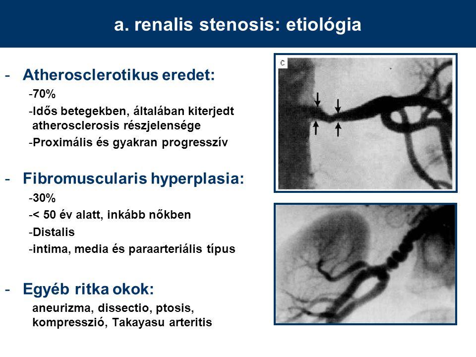 a. renalis stenosis: etiológia