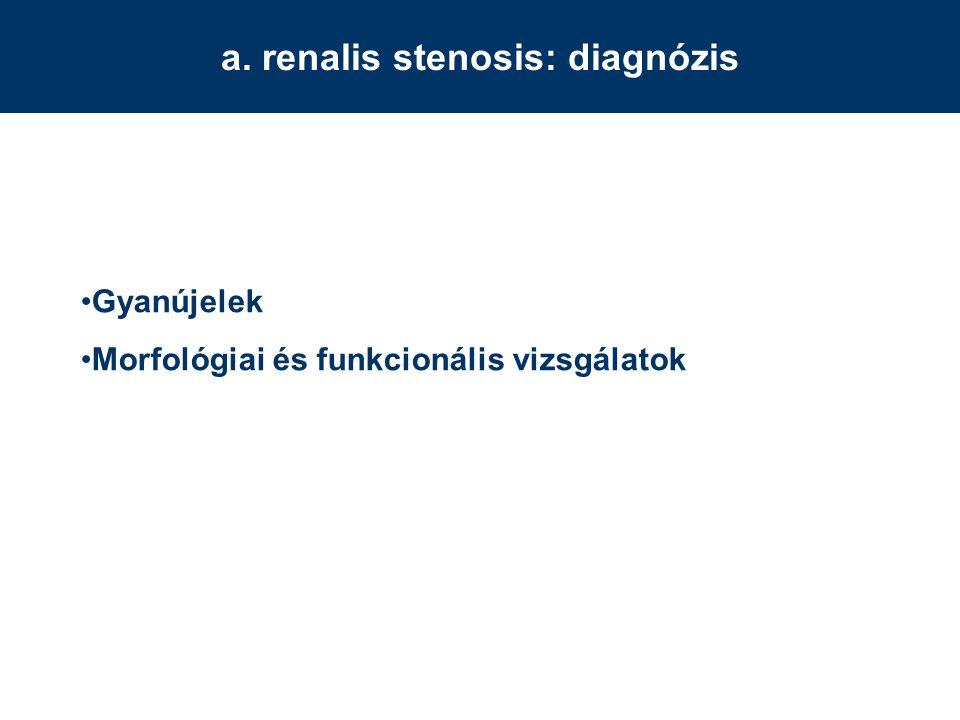 a. renalis stenosis: diagnózis