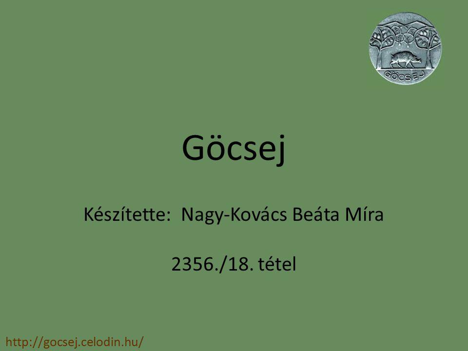 Készítette: Nagy-Kovács Beáta Míra 2356./18. tétel
