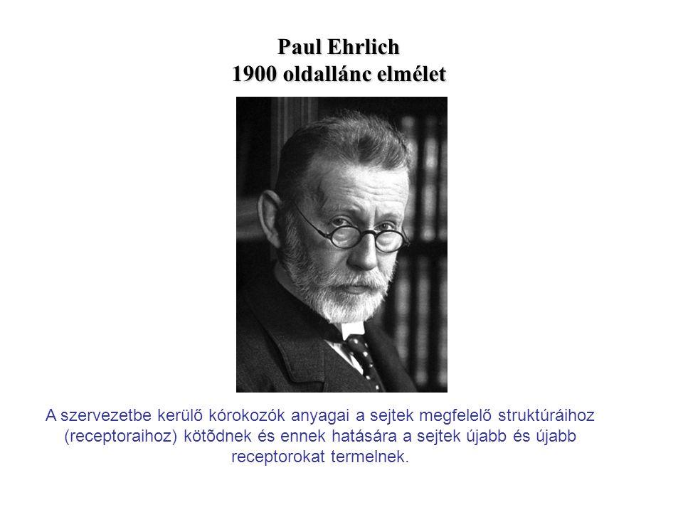 Paul Ehrlich 1900 oldallánc elmélet