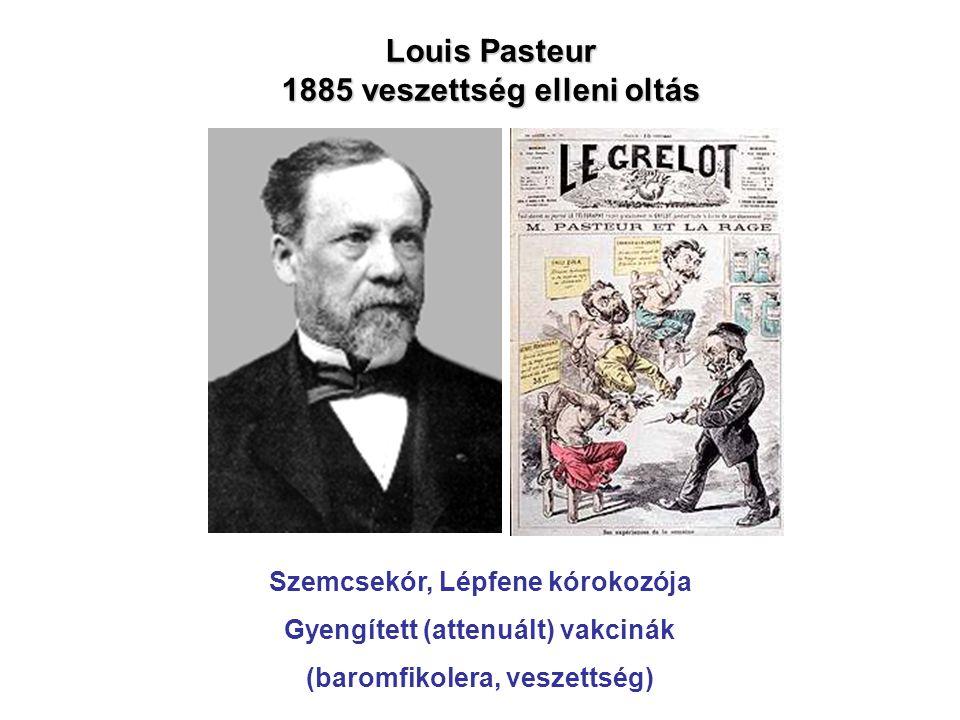 Louis Pasteur 1885 veszettség elleni oltás