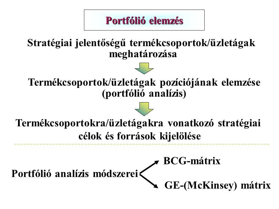 Stratégiai jelentőségű termékcsoportok/üzletágak meghatározása