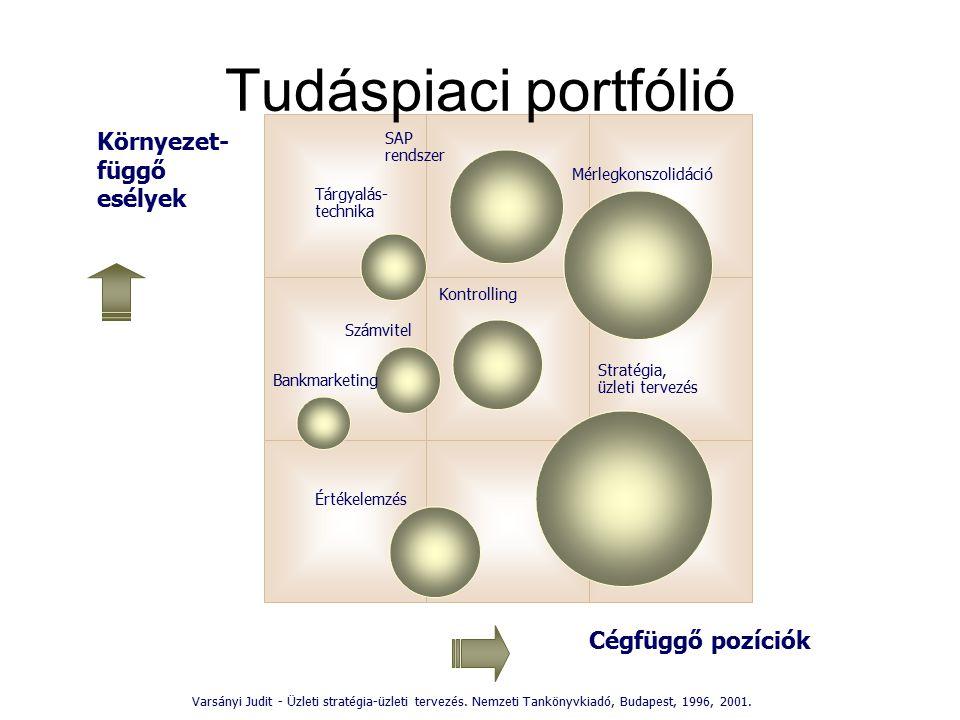 Tudáspiaci portfólió Környezet- függő esélyek Cégfüggő pozíciók SAP