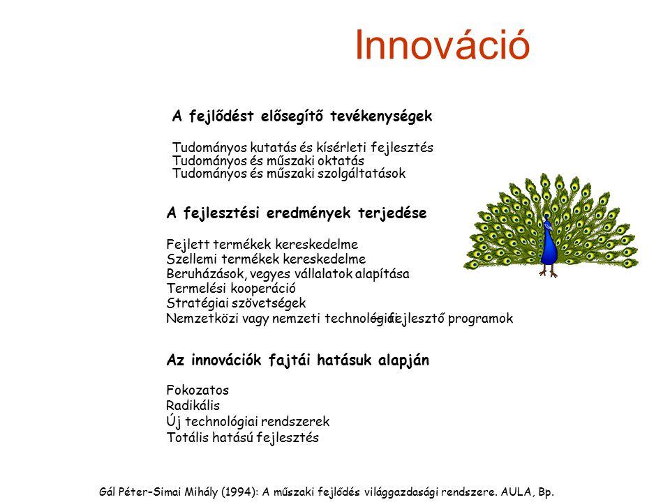 Innováció A fejlődést elősegítő tevékenységek