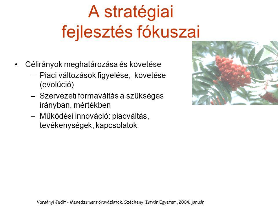 A stratégiai fejlesztés fókuszai
