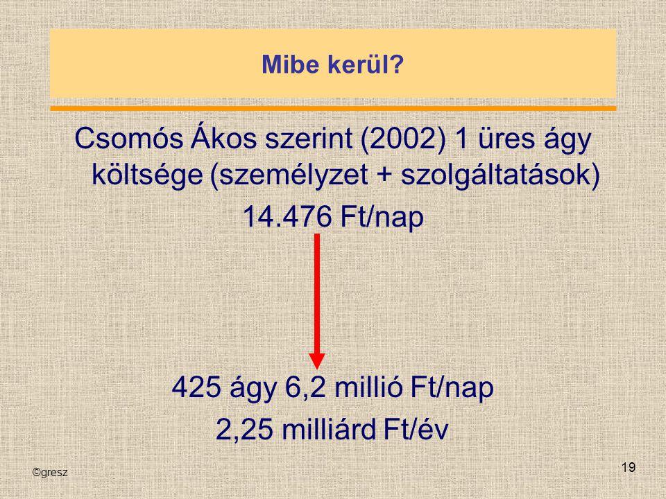 Mibe kerül Csomós Ákos szerint (2002) 1 üres ágy költsége (személyzet + szolgáltatások) 14.476 Ft/nap.