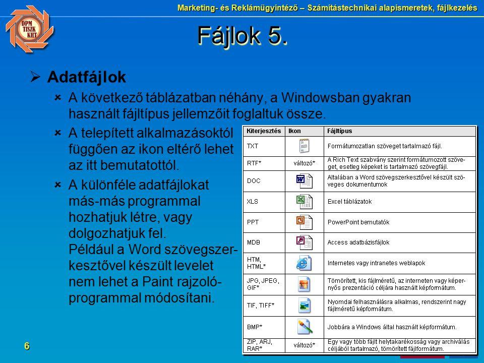 Fájlok 5. Adatfájlok. A következő táblázatban néhány, a Windowsban gyakran használt fájltípus jellemzőit foglaltuk össze.
