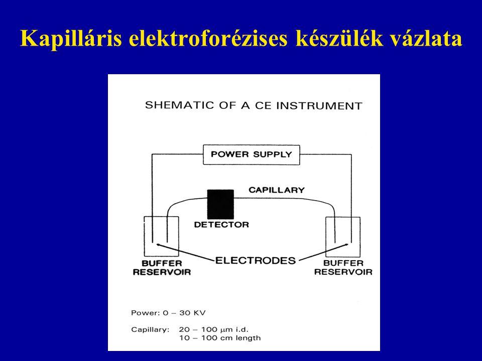 Kapilláris elektroforézises készülék vázlata