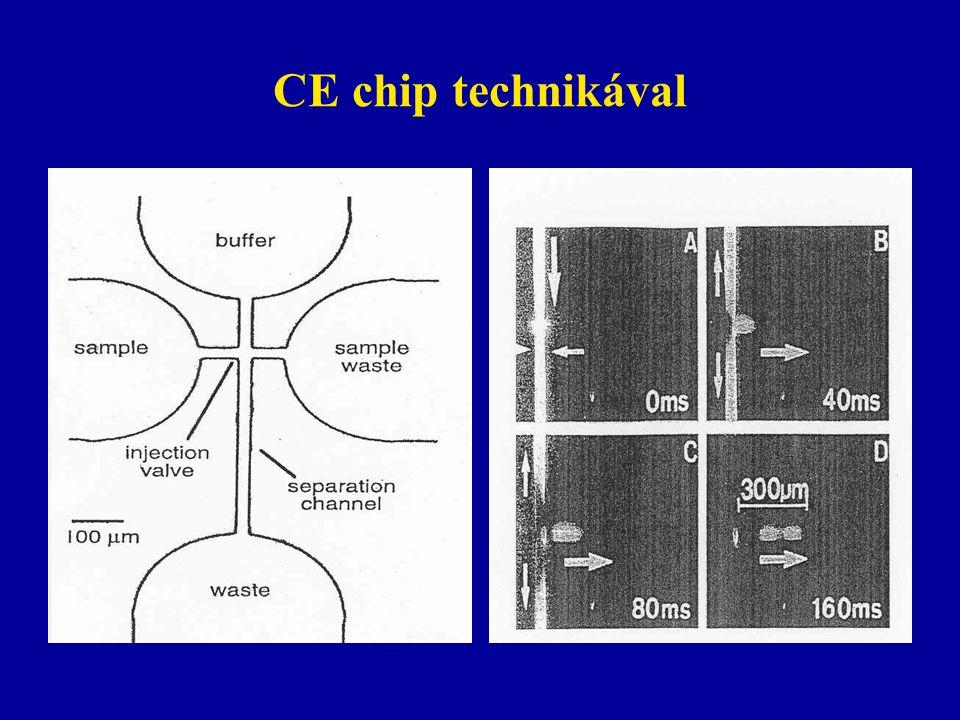 CE chip technikával