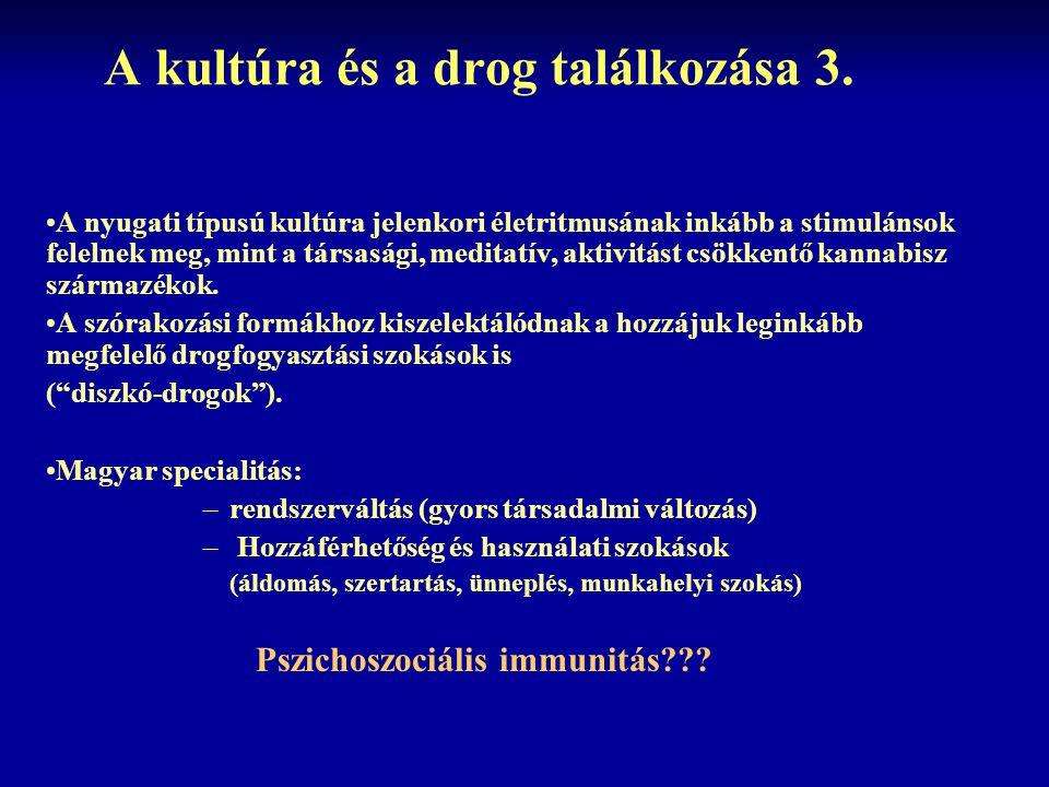 A kultúra és a drog találkozása 3.