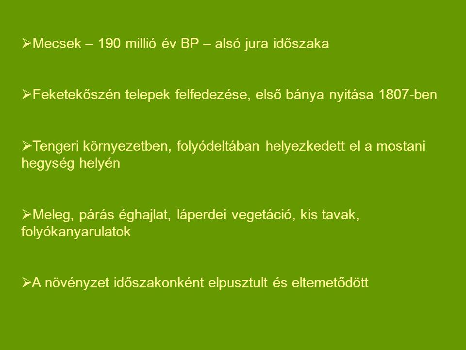 Mecsek – 190 millió év BP – alsó jura időszaka