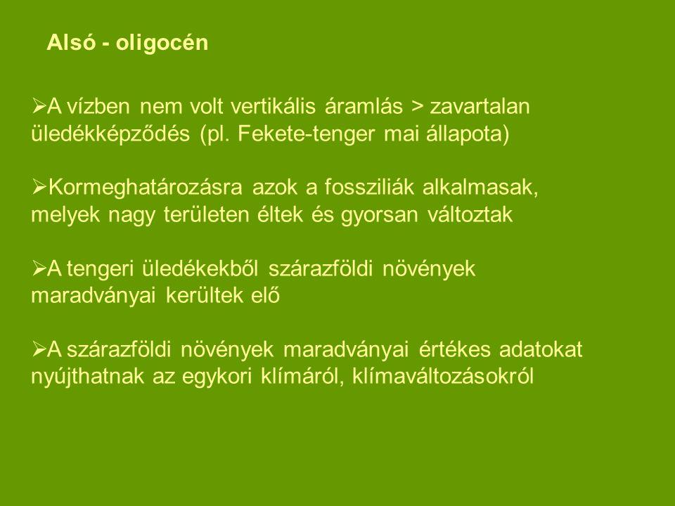 Alsó - oligocén A vízben nem volt vertikális áramlás > zavartalan üledékképződés (pl. Fekete-tenger mai állapota)