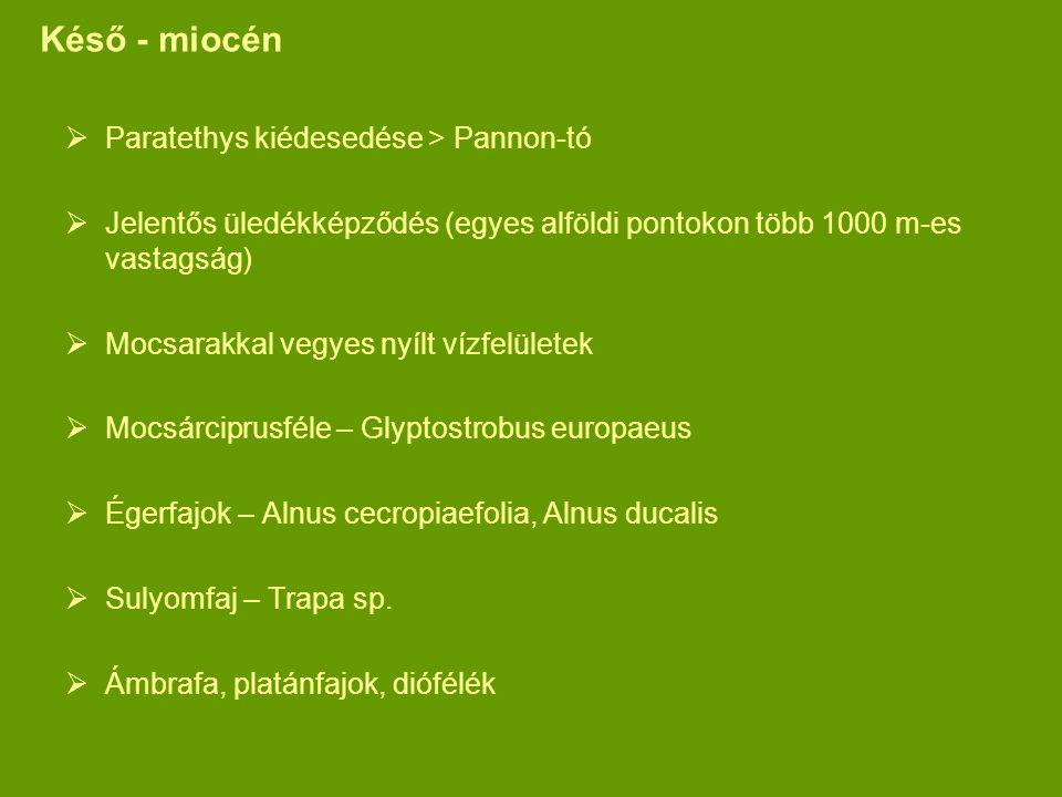 Késő - miocén Paratethys kiédesedése > Pannon-tó