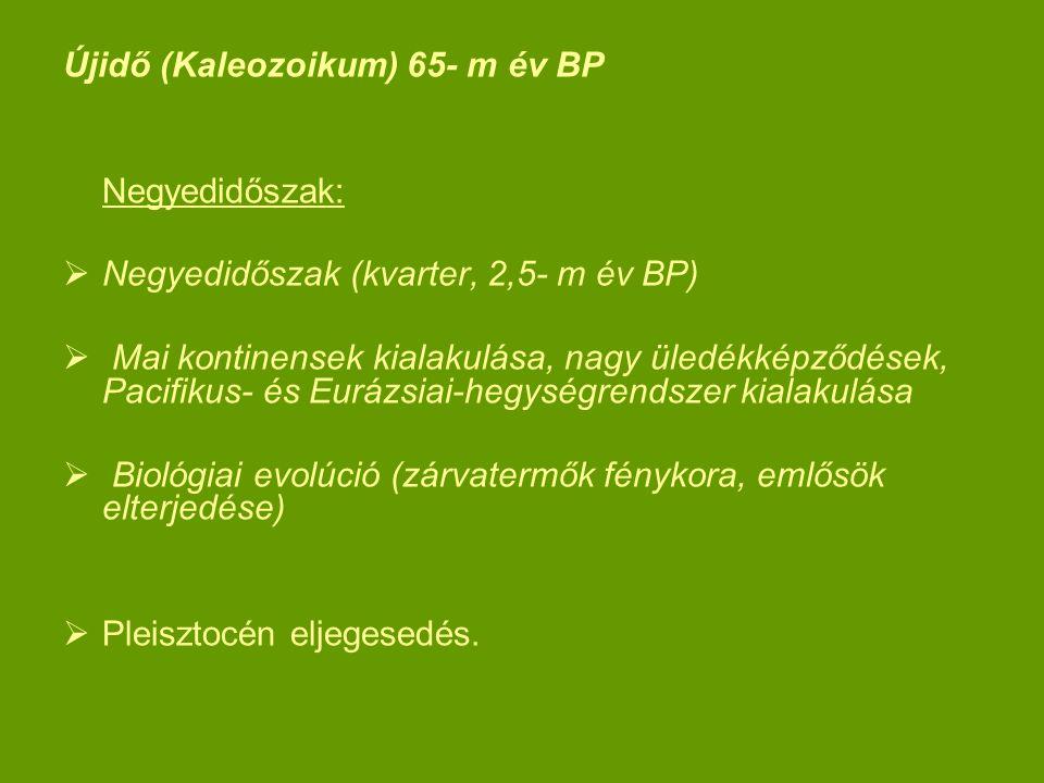 Újidő (Kaleozoikum) 65- m év BP