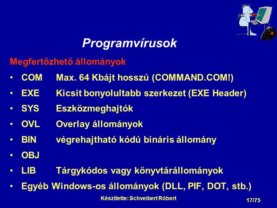A számítógépvírus részei