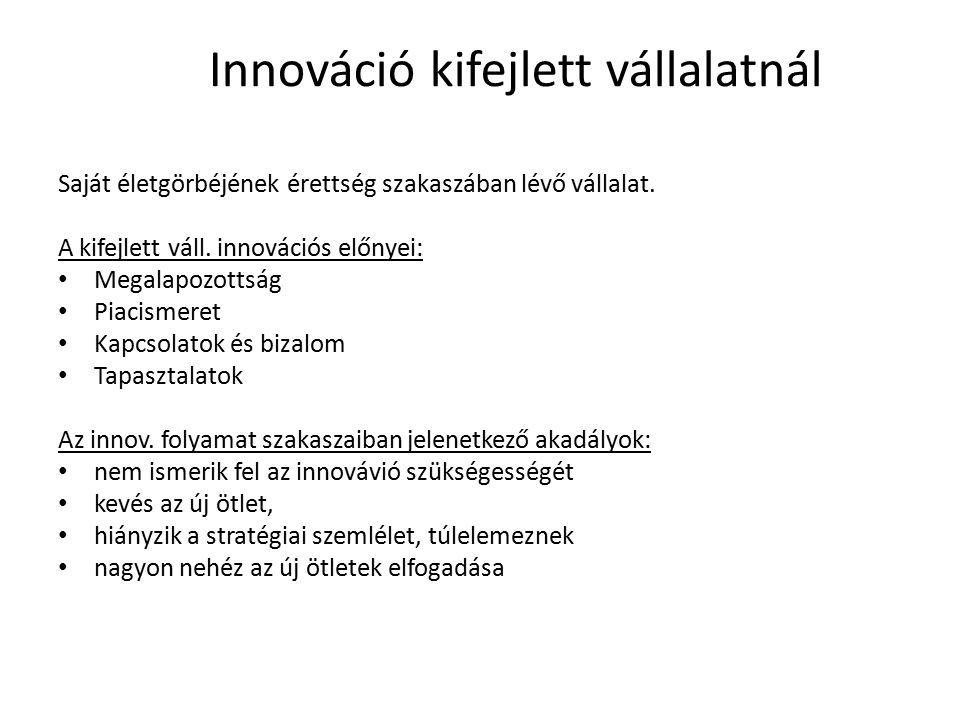 Innováció kifejlett vállalatnál