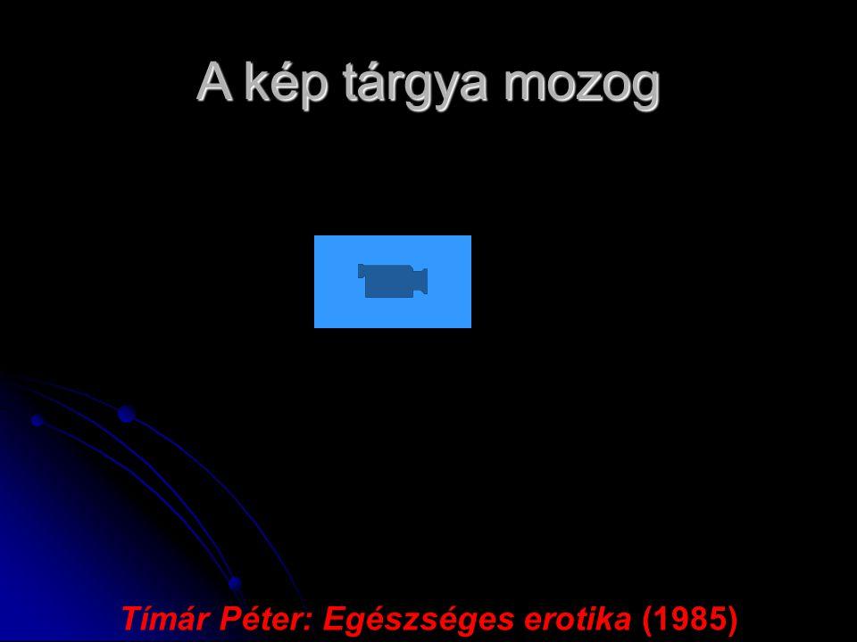 Tímár Péter: Egészséges erotika (1985)