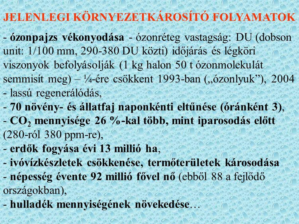 JELENLEGI KÖRNYEZETKÁROSÍTÓ FOLYAMATOK