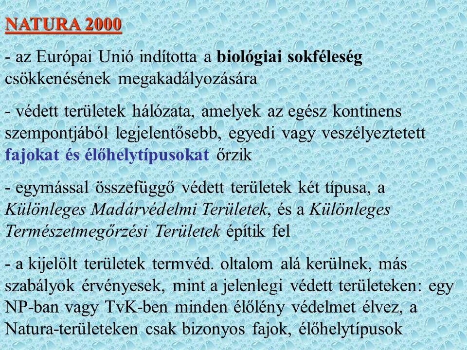 NATURA 2000 - az Európai Unió indította a biológiai sokféleség csökkenésének megakadályozására.