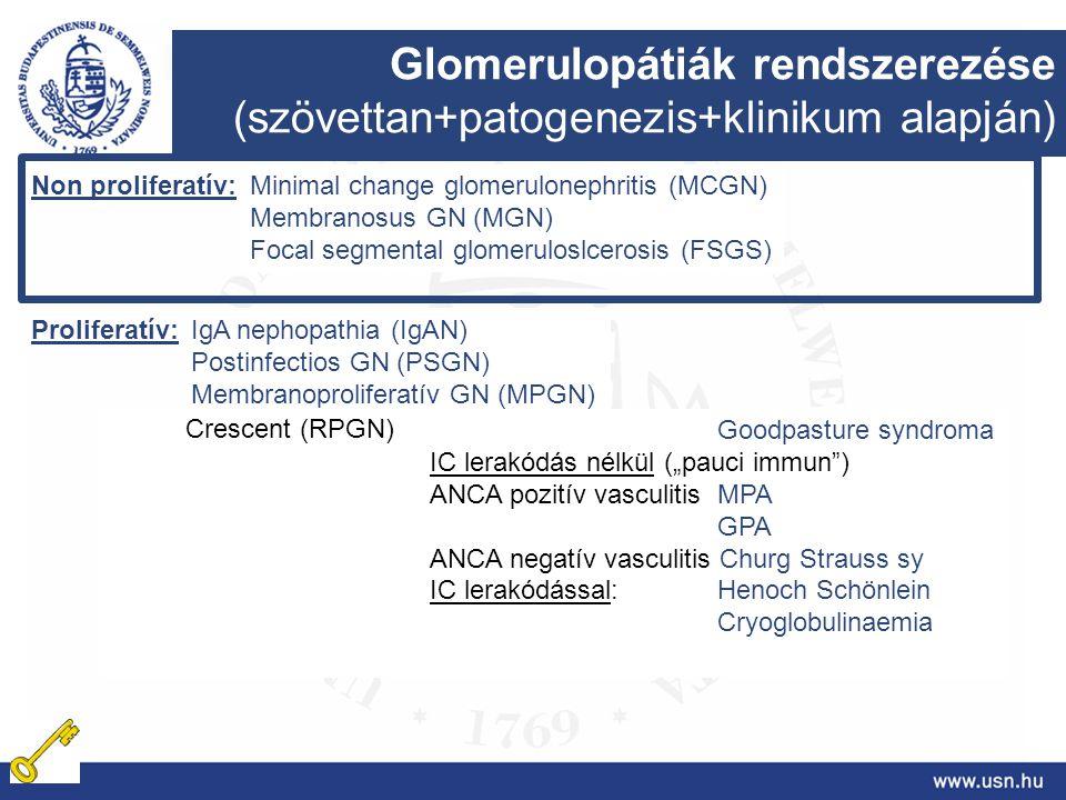 Glomerulopátiák rendszerezése (szövettan+patogenezis+klinikum alapján)
