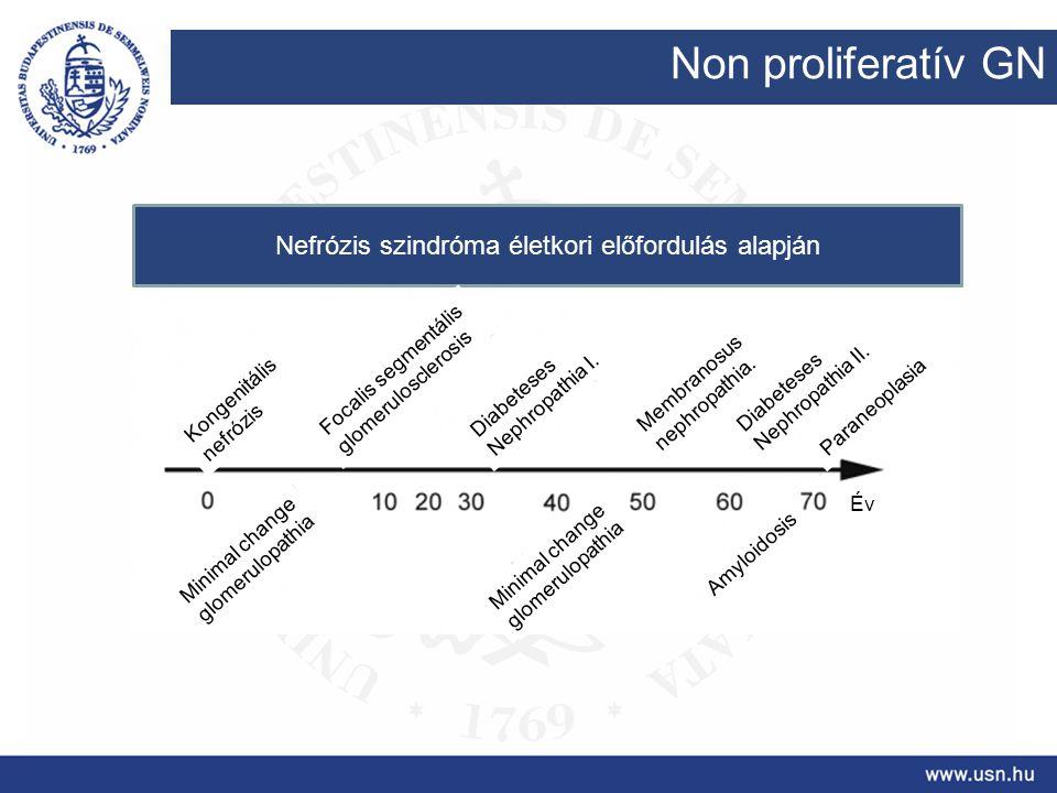 Nefrózis szindróma életkori előfordulás alapján