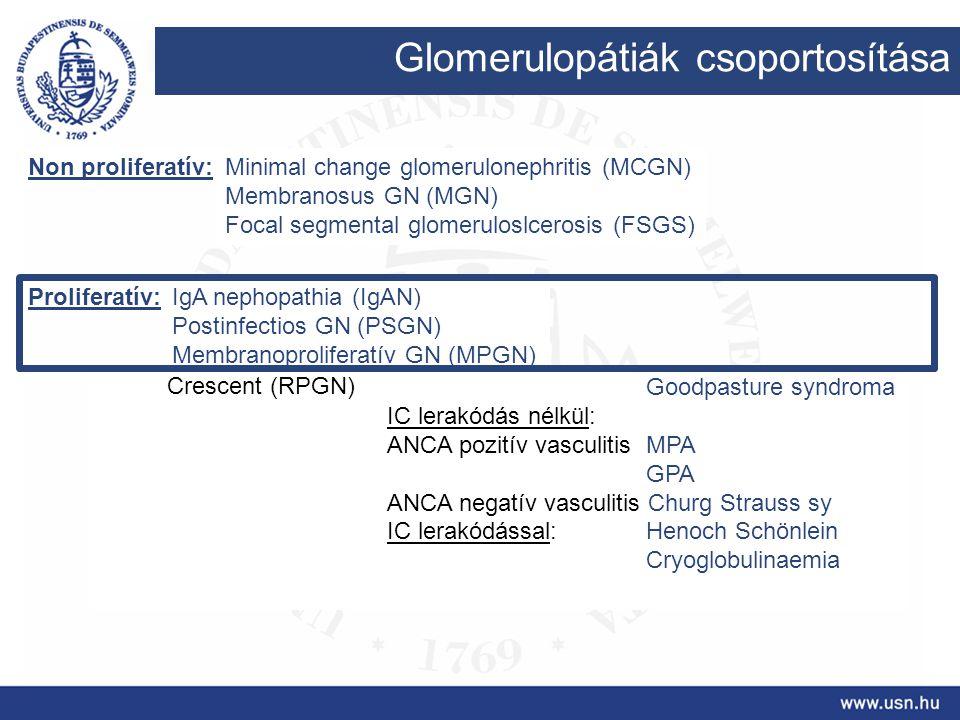 Glomerulopátiák csoportosítása