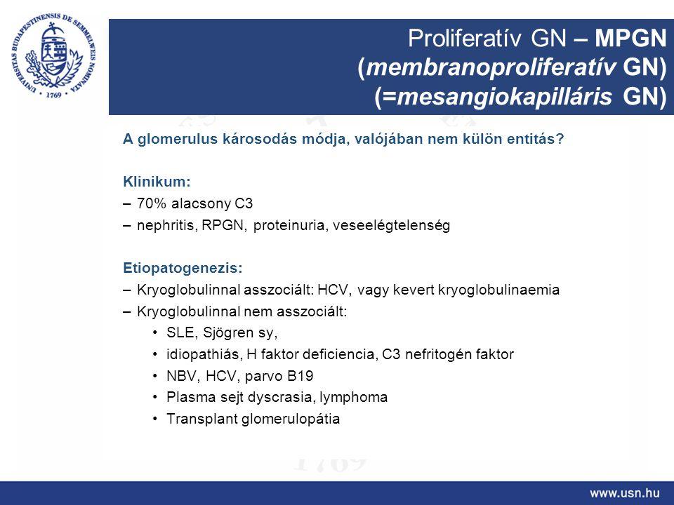 (membranoproliferatív GN) (=mesangiokapilláris GN)
