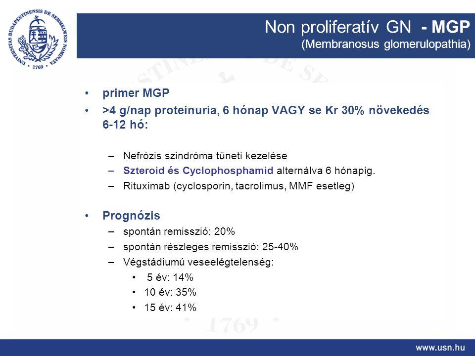 Non proliferatív GN - MGP