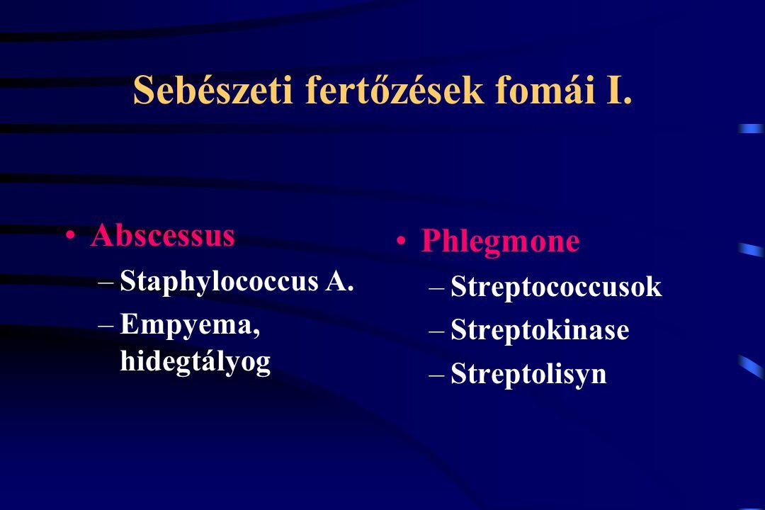 Sebészeti fertőzések fomái I.