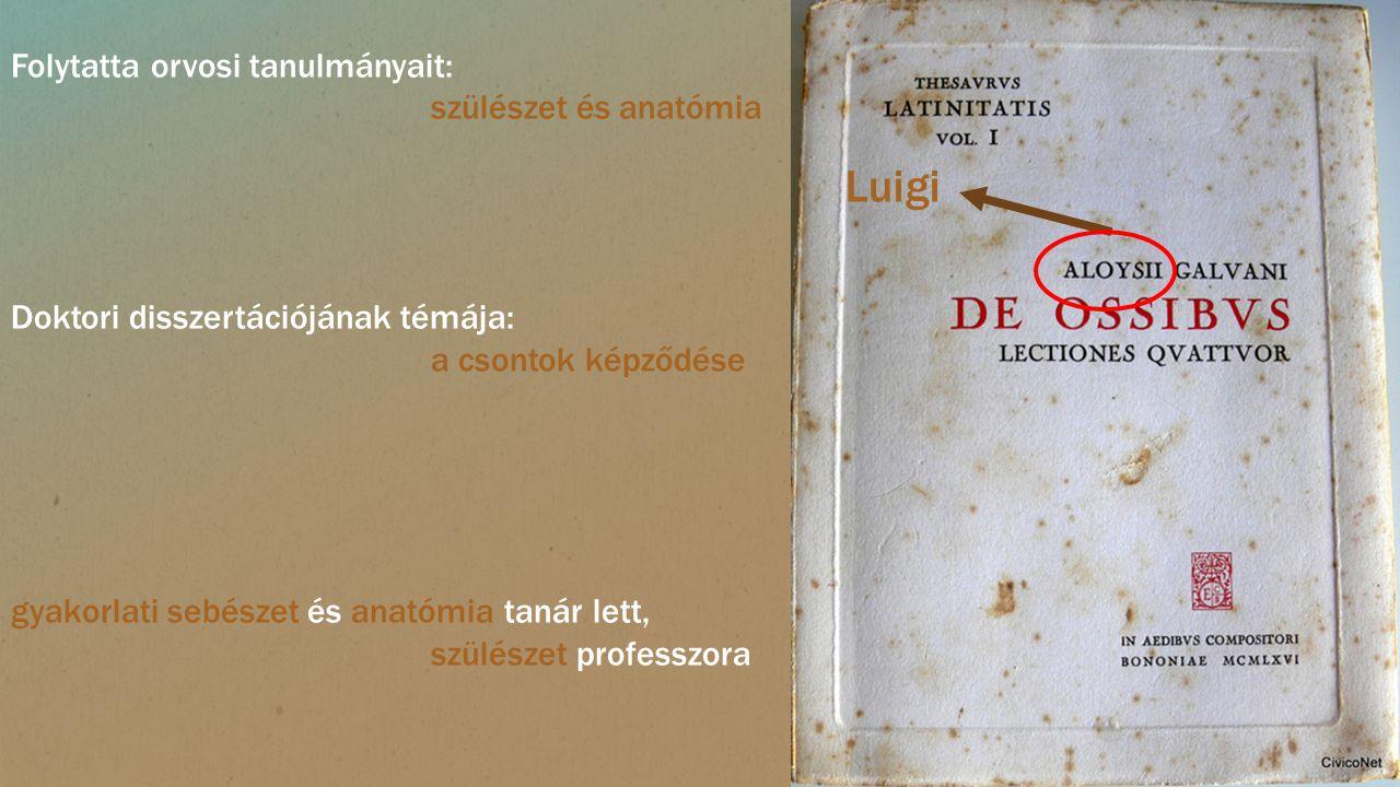 Luigi Folytatta orvosi tanulmányait: szülészet és anatómia