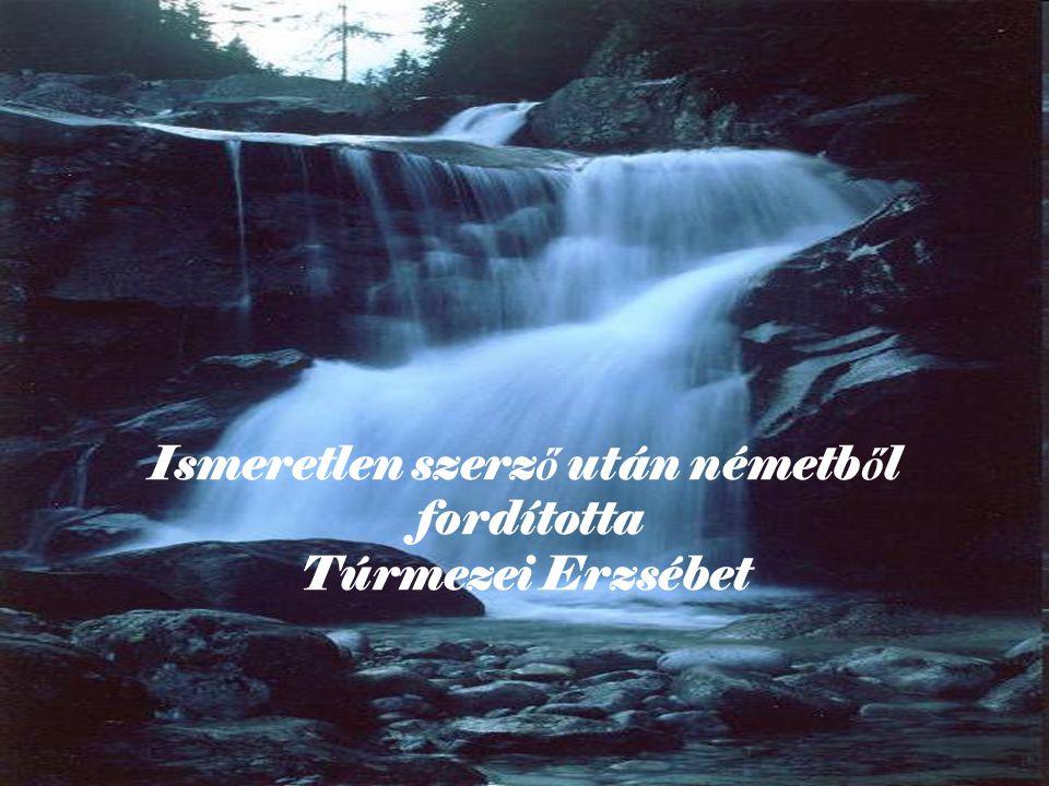 Ismeretlen szerző után németből fordította Túrmezei Erzsébet