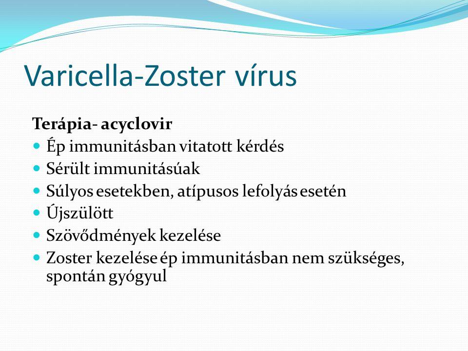 Varicella-Zoster vírus