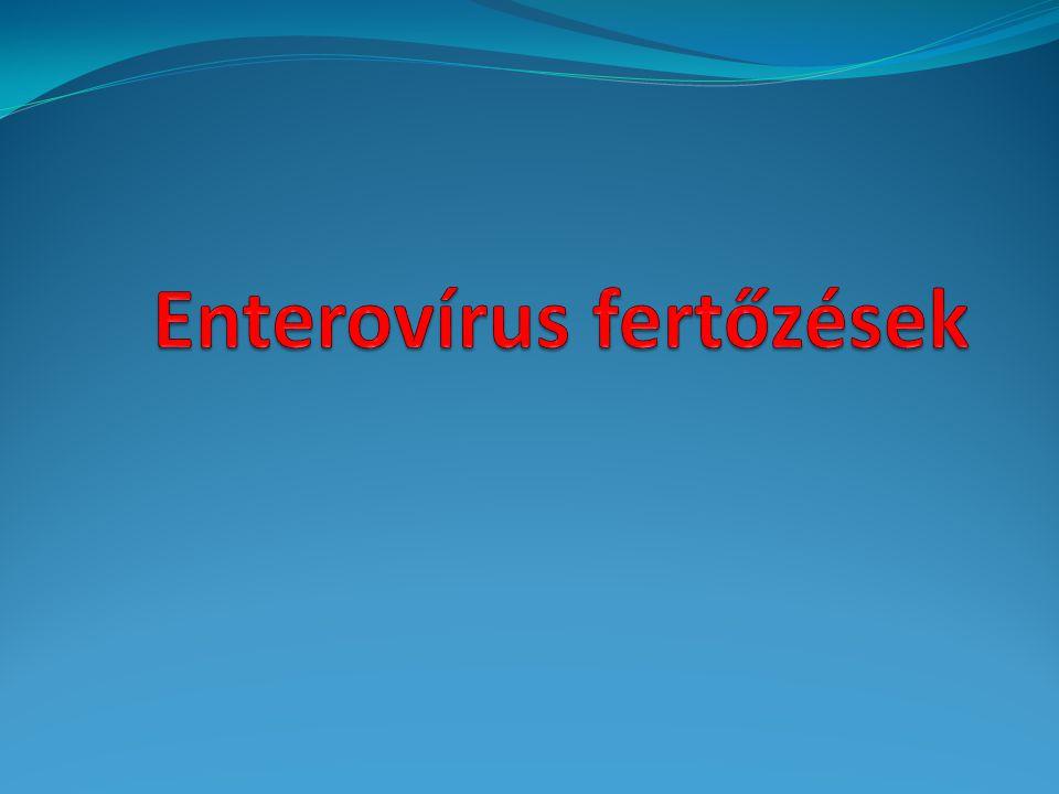 Enterovírus fertőzések