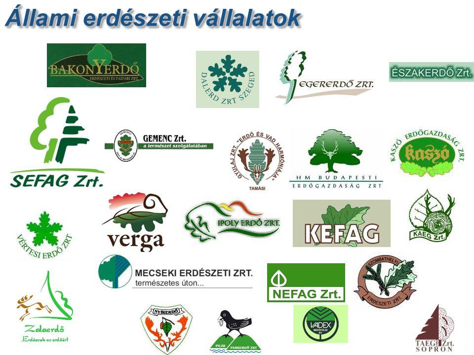 Állami erdészeti vállalatok