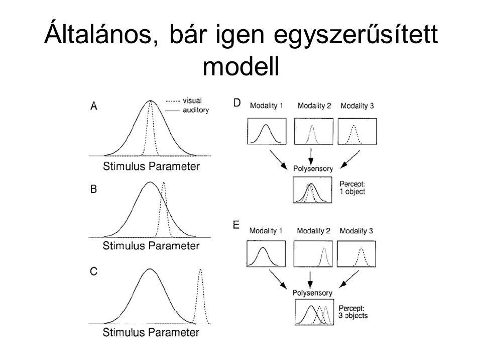 Általános, bár igen egyszerűsített modell