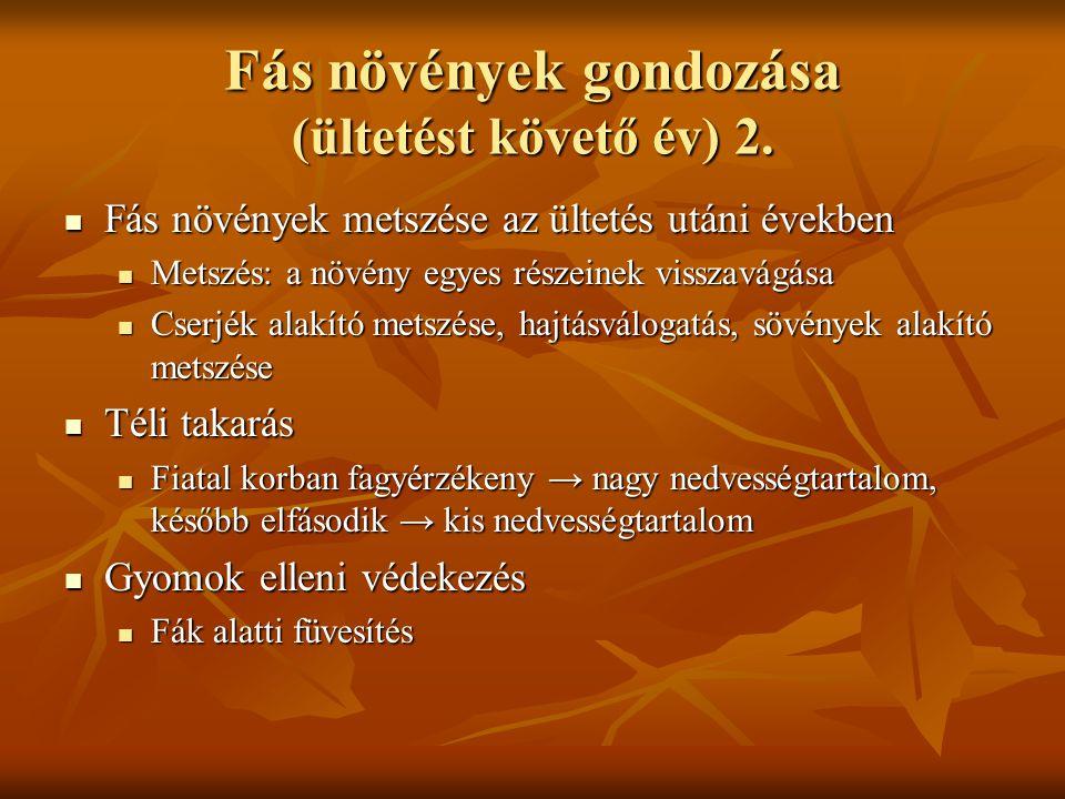 Fás növények gondozása (ültetést követő év) 2.