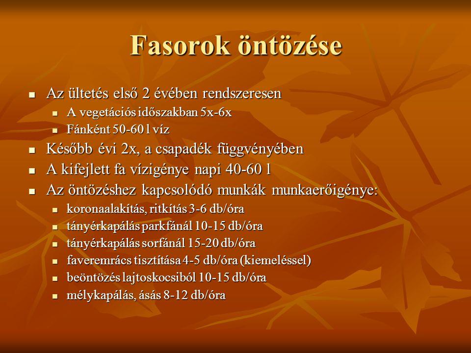 Fasorok öntözése Az ültetés első 2 évében rendszeresen