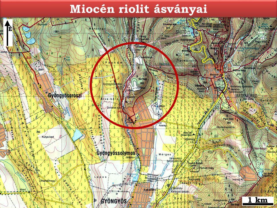 Miocén riolit ásványai