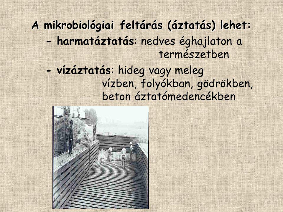 A mikrobiológiai feltárás (áztatás) lehet: