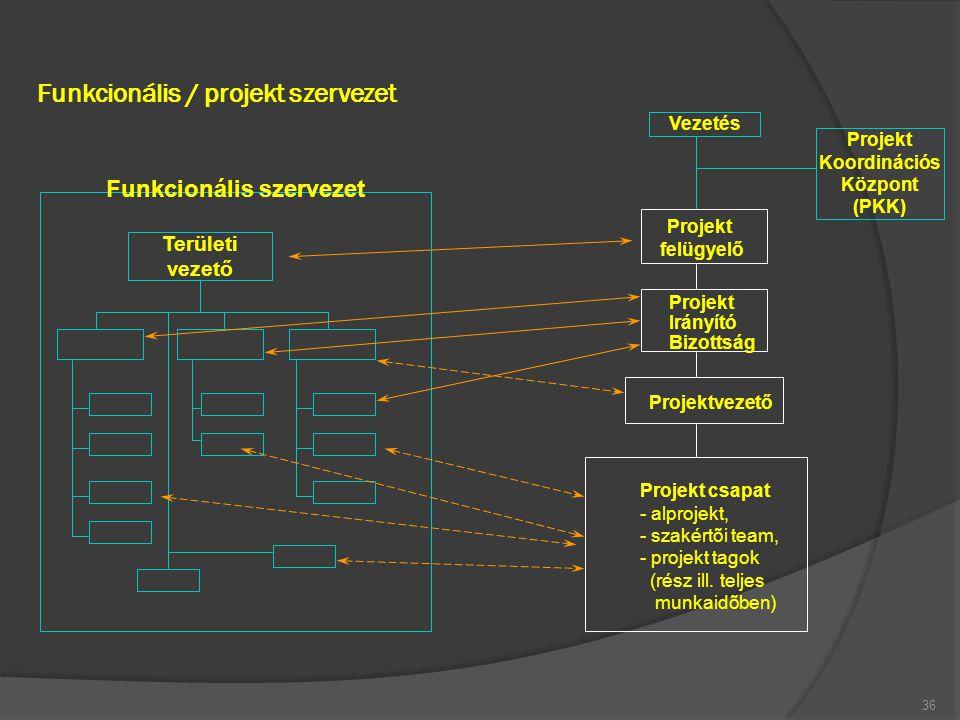 Funkcionális / projekt szervezet