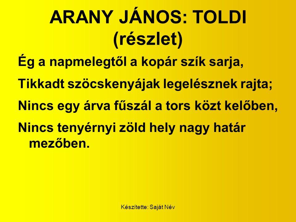 ARANY JÁNOS: TOLDI (részlet)