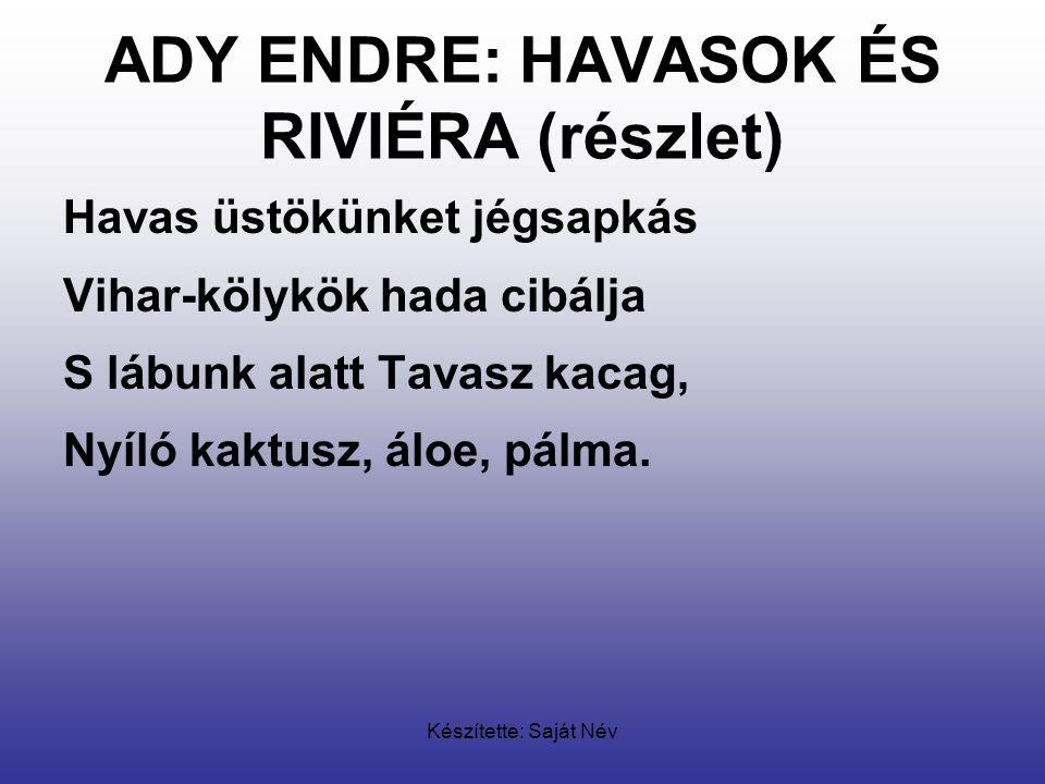 ADY ENDRE: HAVASOK ÉS RIVIÉRA (részlet)
