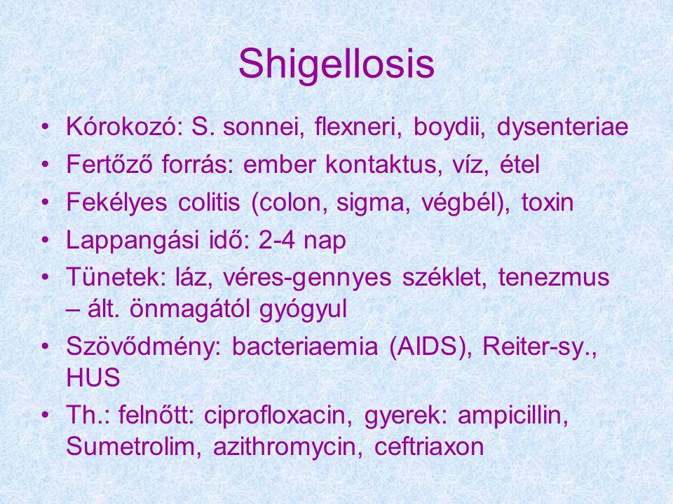Shigellosis Kórokozó: S. sonnei, flexneri, boydii, dysenteriae