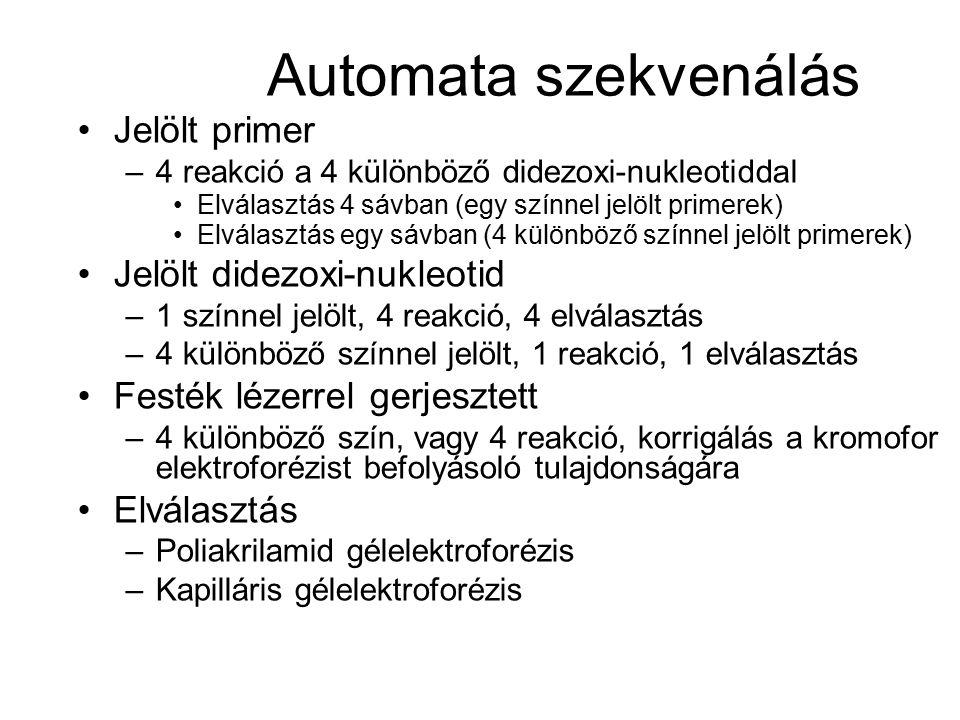 Automata szekvenálás Jelölt primer Jelölt didezoxi-nukleotid