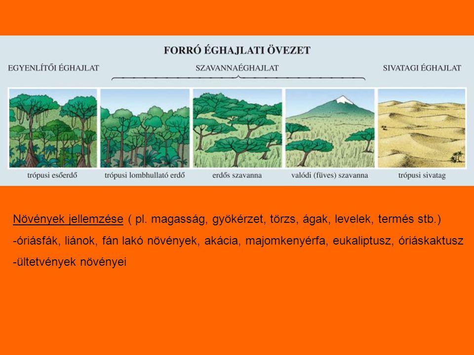 Növények jellemzése ( pl