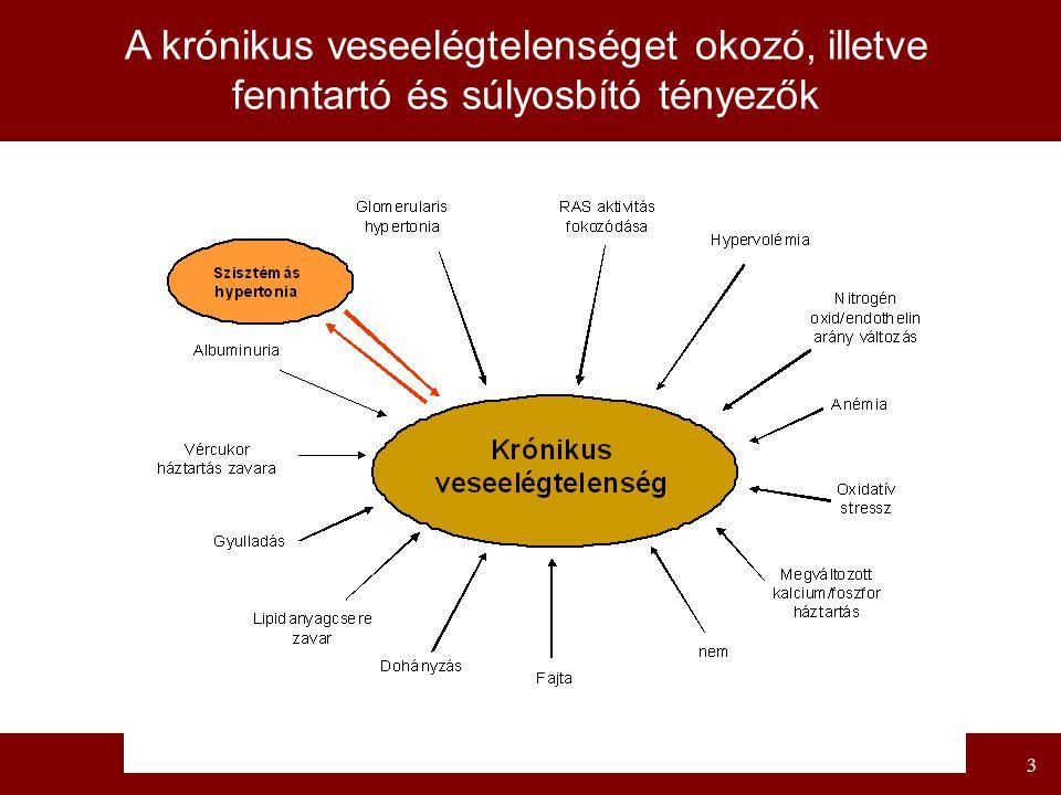 A krónikus veseelégtelenséget okozó, illetve fenntartó és súlyosbító tényezők